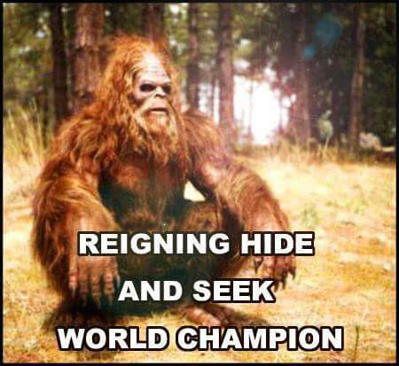 Big Foot Hide & Seek
